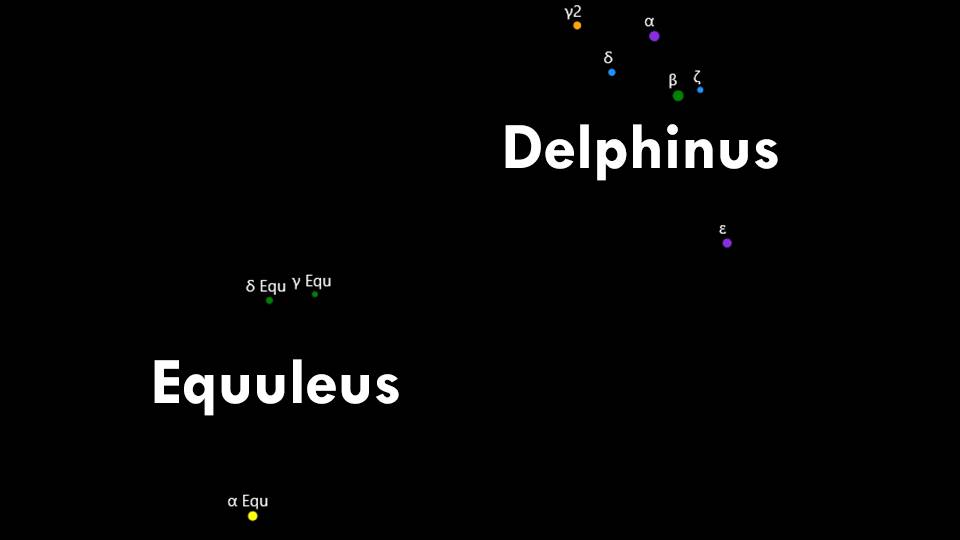 Constellations Delphinus and Equuleus