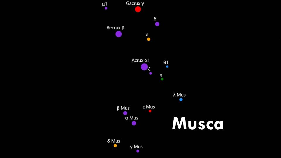Constellations Crux and Musca